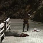 Un'immagine inquietante tratta da Trollhunter di André Øvredal (Trolljegeren, Norvegia 2010)