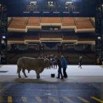 Una curiosa immagine tratta dal documentario The Paris Opera di Jean-Stéphane Bron (L'Opéra, Francia, Svizzera 2017)