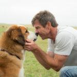 Il cane Bailey con Dennis Quaid in un momento di Qua la zampa di Lasse Hallström (A Dog's Purpose, USA 2017)