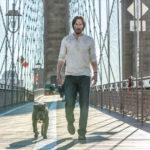 Ancora Reeves con l'amato cane in John Wick Capitolo 2 di Chad Stahelski (USA, 2017)