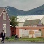 Scorci islandesi in Passeri di Rúnar Rúnarsson (Þrestir, Islanda, Danimarca, Croazia 2015)