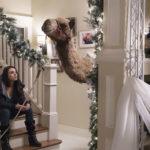 Mila Kunis e un cammello in casa durante Bad Moms 2 - Mamme molto più cattive di Jon Lucas e Scott Moore (A Bad Moms Christimas, USA, Cina 2017)