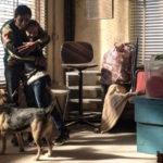 Momenti di tenerezza per Marcello Fonte e la figlioletta in Dogman di Matteo Garrone (Italia, Francia 2018)