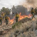 Un'altra immagine d'azione in Fire Squad - Incubo di fuoco di Joseph Kosinski (Only the Brave, USA 2017)