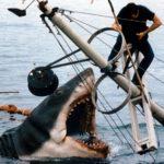 Un'immagine dall'adrenalinico epilogo de Lo squalo di Steven Spielberg (Jaws, USA 1975)