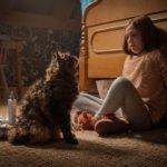 """Jeté Laurence fronteggia il gatto Church dopo la """"resurrezione"""" in Pet Sematary di Kevin Kölsch e Denis Widmyer (USA, 2019)"""