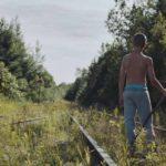 Un'altra, poetica ed eloquente, immagine dal corto Fauve di Jeremy Comte (Canada, 2018)