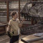 Il giovanissimo Lorenzo Sisto in una simbolica immagine tratta da Mio fratello rincorre i dinosauri di Stefano Cipani (Italia, 2019)
