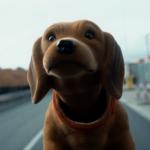"""Un'immagine """"canina"""" tratta da Level Up Your Life di Stefan Hillebrand e Olivier Paulus (Svizzera, Germania 2018)"""