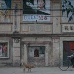 Uno scorcio cittadino di Changfeng Town di Wang Jing (Cina, 2019)