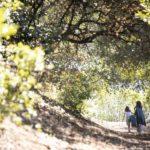 Nella natura nel corto BMM - Being My Mom di Jasmine Trinca (Italia, 2020) foto Alberto Novelli