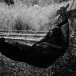 Momenti di riposo in Genus Pan di Lav Diaz (Lahi, Hayop, Filippine 2020)