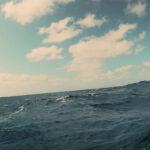 In mare aperto durante Il Metodo Kempinsky di Federico Salsano (The Kempinsky Method, Italia 2020)