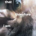 La locandina del corto The animal that therefore I am di Bea de Visser (Olanda, 2019)